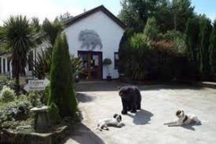 Lakeside Cottages, Killeshandra, Cavan Activities